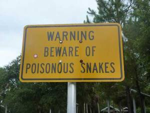 Attention aux serpents venimeux
