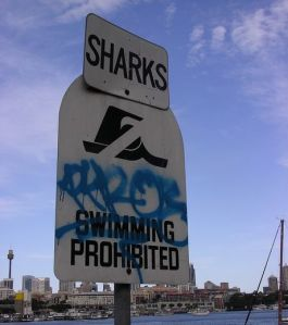 Requins/Baignade interdite