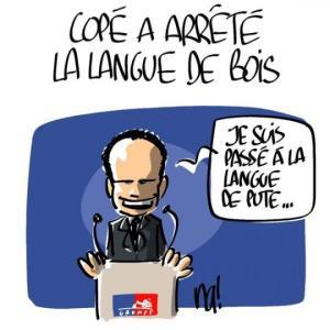 La langue de bois à la française :)