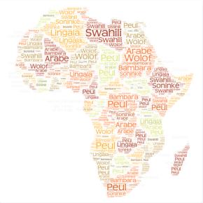Les langues africaines sont-elles absentes duNet?
