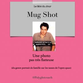 Le mot du jour en anglais:Mugshot