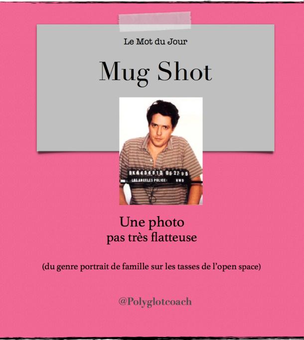 Le mot du jour anglais mug shot.png