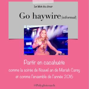 Le mot du jour en anglais: Gohaywire