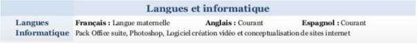 comment mettre en avant vos comp u00e9tences en langues dans votre cv  nos conseils pour convaincre