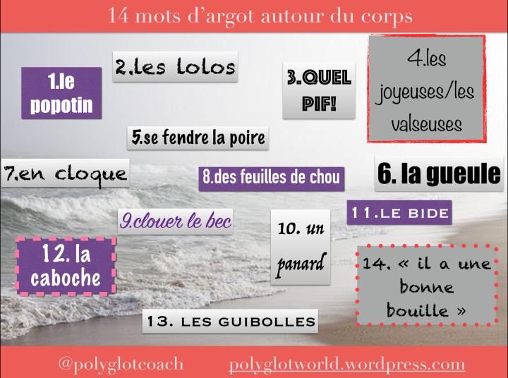 argot parties du corps par polyglotcoach.png