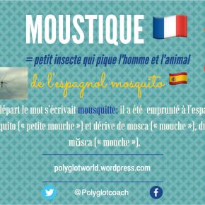 Origine du mot moustique : au XVIIe siècle,on écrivait «mousquitte»!