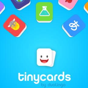 Fan de flashcards pour mémoriser? On a testé pour vous l'appli Tinycards parDuolingo