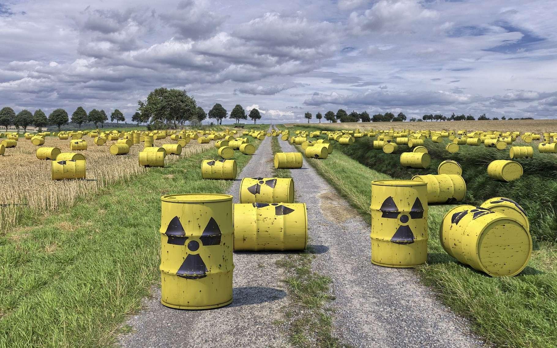 FLE déchets radioactifs DALF C1.jpg