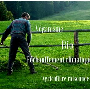 20 sujets de discussion de niveau intermédiaire (B2) pour progresser en français •FLE