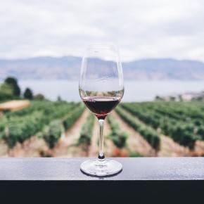 Compréhension orale n°26 : «La France a-t-elle un problème d'alcool ?» d'après France Culture (Niveaux avancésC1-C2)