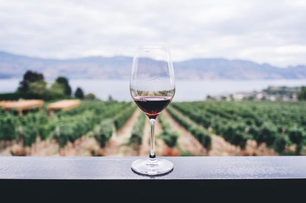 dry january janvier sec alcool alcoolisme FLE français.jpeg