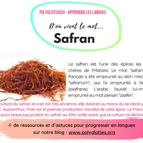 Découvrez l'étymologie de 30 mots en français – Compilation de nos meilleurespublications!